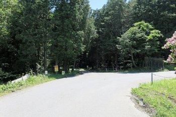 走井林道ルート2.jpg